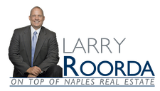 Larry Roorda Realtor